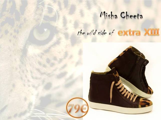 cheeta wild